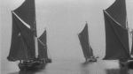 Red Sails Snapshot - Archive