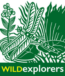 Wild Explorers Logo - Designed by Hugh Ribbans